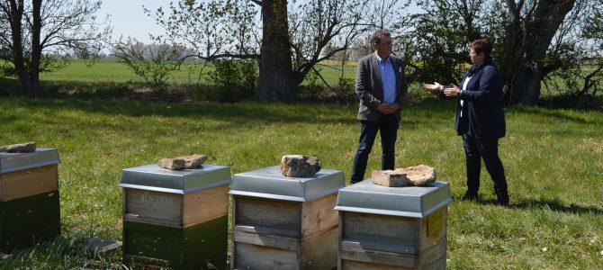 """Die Bienen summen in der Luft, erfüllen sie mit Honigduft – Projekt """"PoshBee"""" bringt Landwirte, Imker und Wissenschaftler zusammen"""