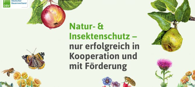 Insektenschutzprogramm – Erfolg?